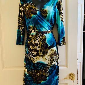 Dresses & Skirts - Leopard animal print classic wrap midi dress